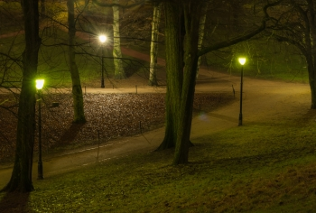 Slottsparken paths at Night-1160