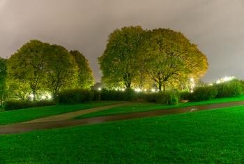 Vigeland park lawns-340
