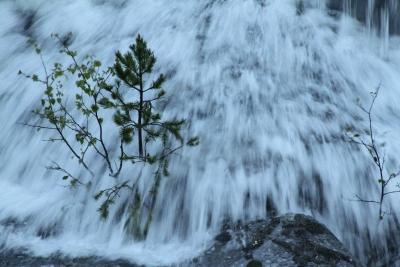 Flom i fossen Foto -á-®Dag Johansen_4060.JPG