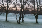 First frost at Oslo Golf Club-310