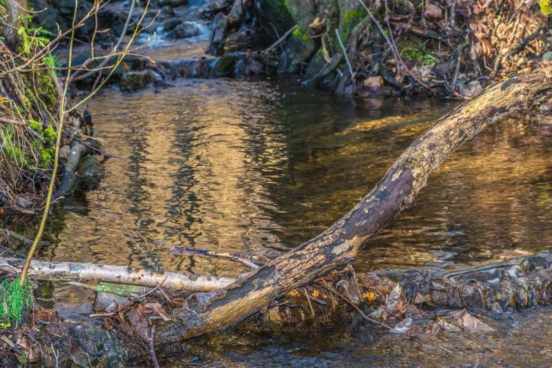 Water Captures