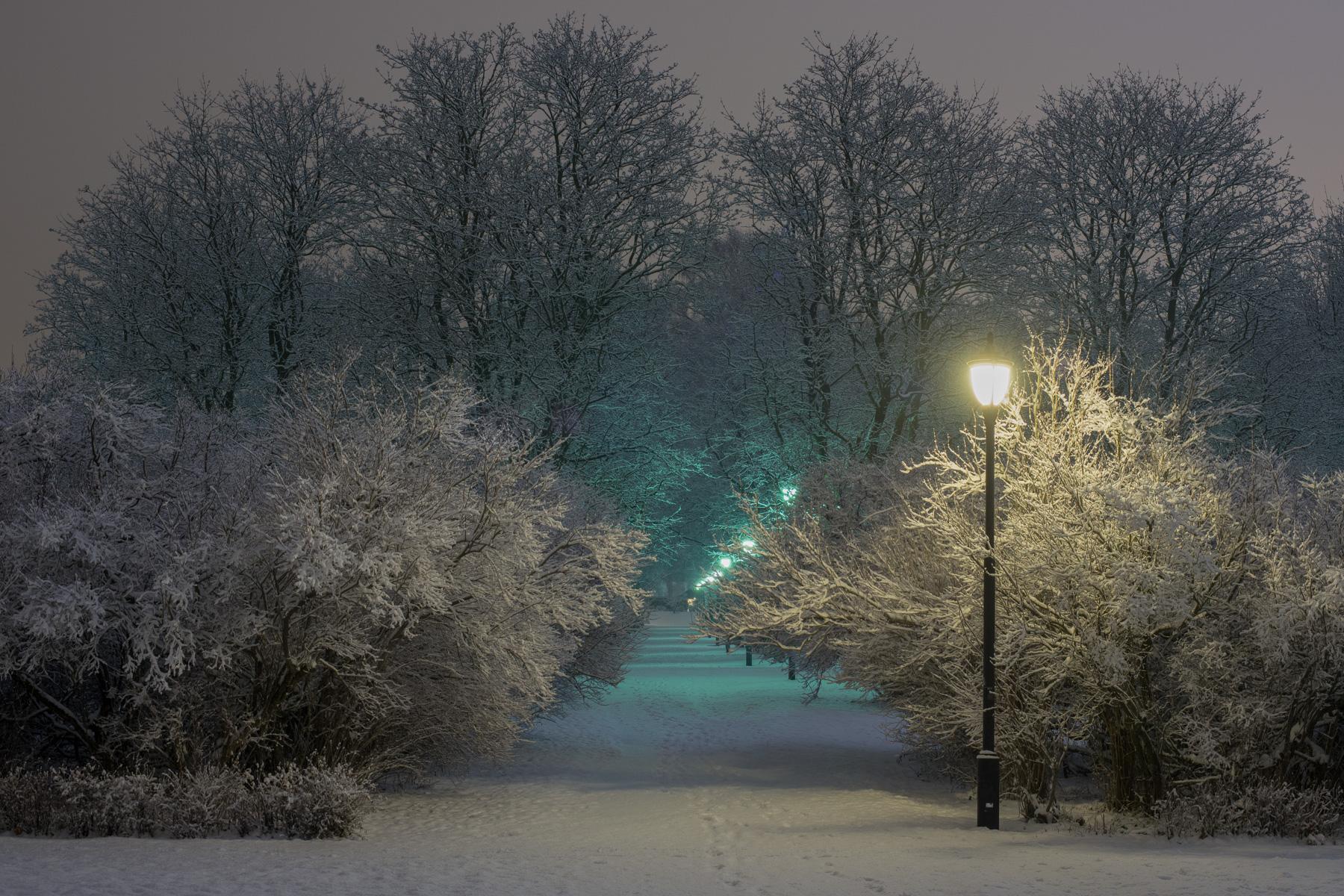 Frognerparken om natten med sne